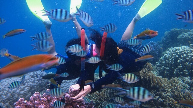 Paket Honeymoon Karimunjawa Alchy Cottages 3D2N