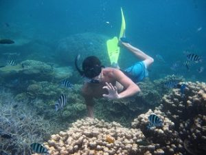 Snorkling Karimunjawa (11)