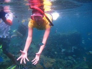 Snorkling Karimunjawa (8)